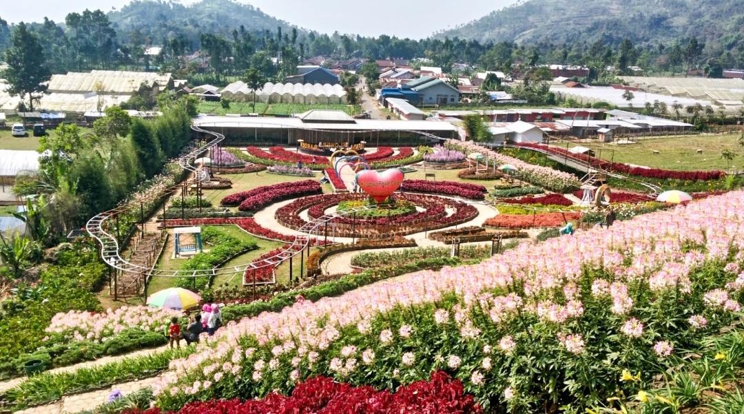 Taman Bunga Impian, Kutabawa Flower Garden Purbalingga